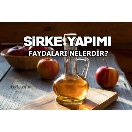 Elma Sirkesinin 20 Faydası Nelerdir ?