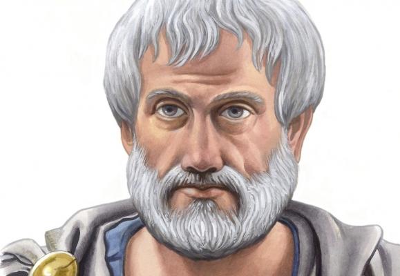 Aristoteles'in Kuramı ve Şekli Nedir ?