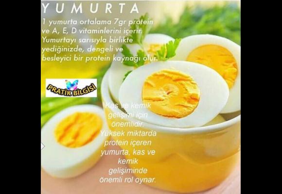 Yumurta'nın faydaları Nelerdir ? Yumurta daki Etken Maddeler Nedir ?